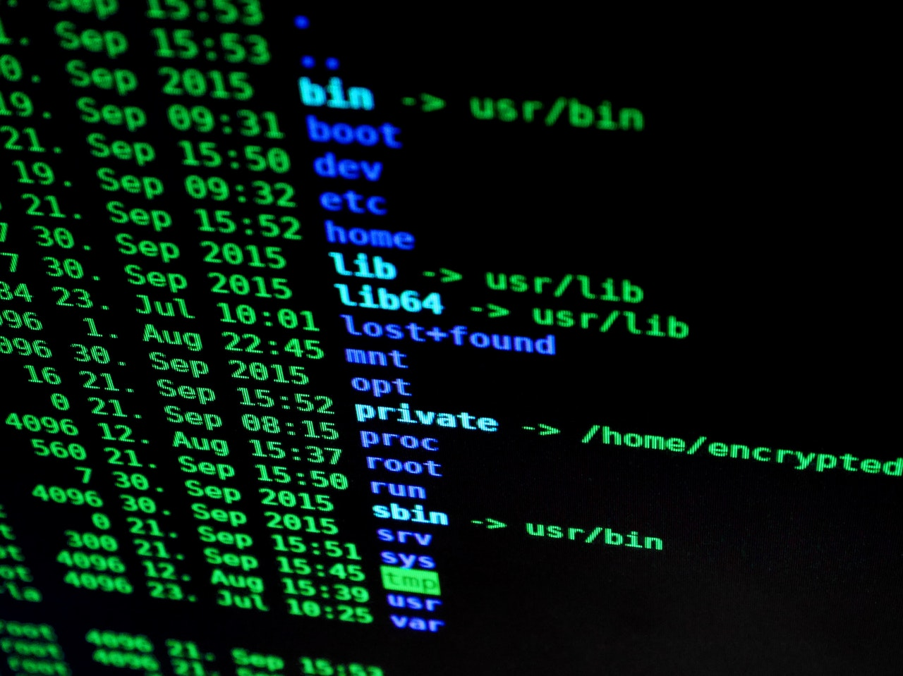 Cybersecurity 101: How Can Businesses Keep their Money Safe Online?