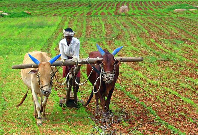 TFG Insights: India Agricultural / Agritech Sector